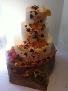 Frances' Cake